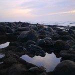 Le reef