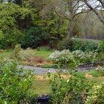 Delightful front garden of Lyndhurst