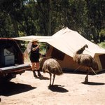 Southern Flinders Ranges SA