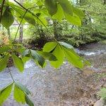 Relaxing Johnathan Creek