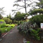 Ocean House Garden