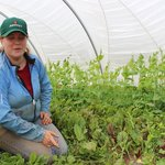 Kerry, one of the our produce farmers.