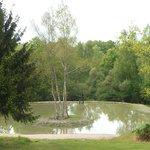 petit lac devant la ferme