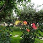 Le magnifique jardin