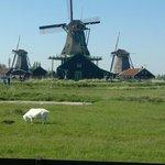 Etwas ausserhalb von Amsterdam