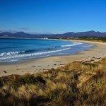 Beach by Scamander