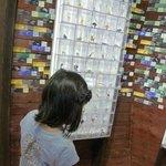 Kaiyodo Hobby Museum Shimanto