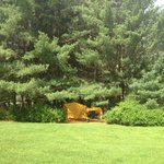 Kadampa Meditation Center- Camping Area
