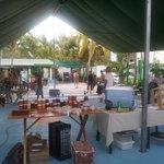 Photo de Samara Organics Mercado Organico