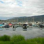 Boating area at the Okanagan Lake