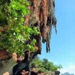Phra Nang