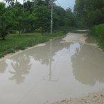 One of many rain-filled potholes on Pango Rd near the villas