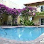Swimming pool area in courtyard
