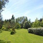 Just part of the wonderful garden