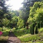 im Heidegarten