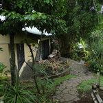 Rainforest Casita