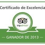 Excellence certificate 2013