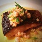 Pan-fried salmon and brown shrimp