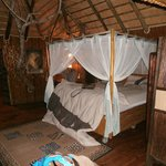 Bilde fra Pezulu Tree House Game Lodge