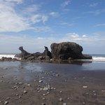 Muy cerca de Playa El Tunco