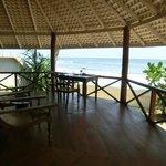 Nachmittags mit ner Kanne Tee am Tisch sitzen und Meeresschilkröten beobachten ...