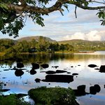 Harvey's Point - Lough Eske (66774107)
