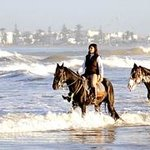 à cheval a la mer a Essaouira