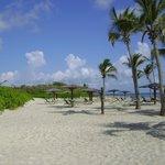 The beach at Nisbet