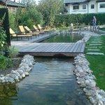kniep Pool
