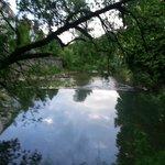 Murr river