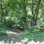 Buckland Rings guardpost