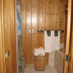 Looking into bathroom from main room