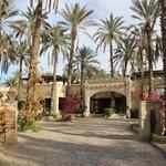 Eden Palm Tresors de l'Oasis