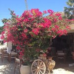 Kavos Boutique Hotel Naxos Photo