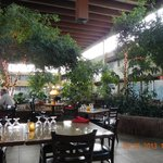 open areas by restaurant
