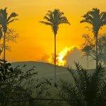 Sunrise (66886096)