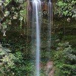 Lambir Hills National Park