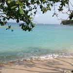 Bilde fra Mango Bay All Inclusive