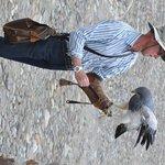 the dutchman wth his bird