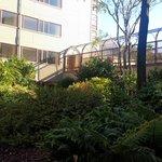 Atrium Garden
