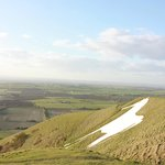 Westbury White horse from the top