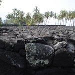 ヘイアウ、こんなにたくさんの溶岩石を平に積むのは大変!