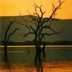 Lake Fyans Vic
