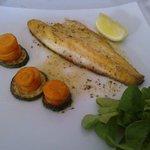 Sea-bass - main course