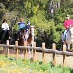 Lawton Stables Trail Ride