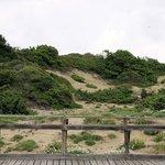 Le bellissime dune di sabaudia
