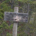 Hiking towards Alice Lake