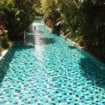 la piscine qui dessert les chambres