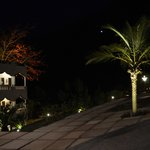 Night View garden