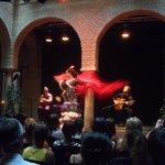 Ole flamenca !